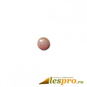 Заглушка деревянная Ø-10/15 бук