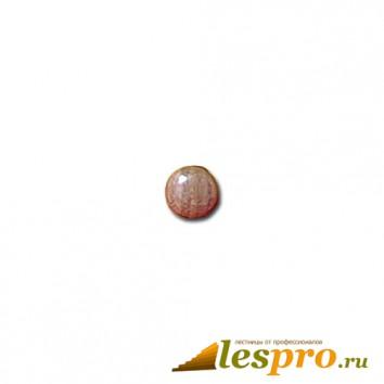 Заглушка деревянная Ø-10/15  дуб